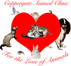 The Coppergate Animal Clinic - Dr. Ursula Eckert-Peterson DVM